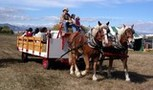 Happy Trails Horse Drawn Rides - Hay Rides, Wagon Rides, Pony Rides, Belgian Horses, fun rides, Draft horses, Party fun